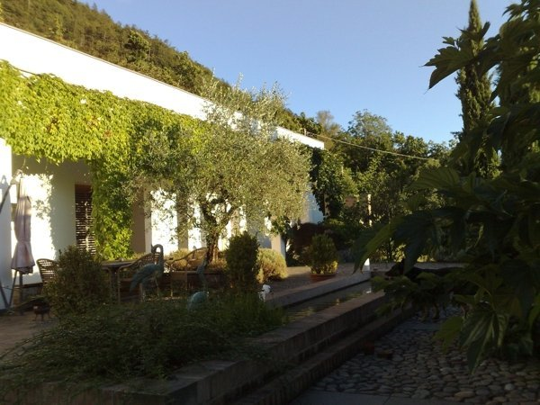Architektur und natur for Architektur und natur